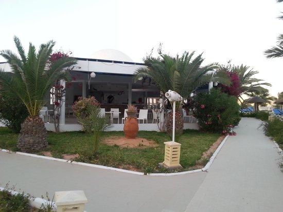 Palais des Iles Djerba Hotel: Poolbar
