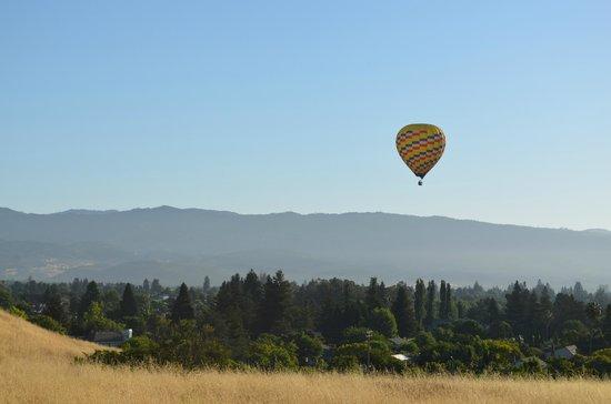 Napa Valley Balloons, Inc. : Napa Valley Balloon