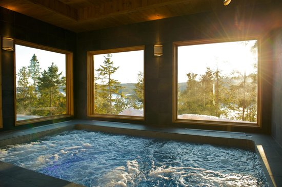 Saint-Alexis-des-Monts, Канада: Indoor hot tub