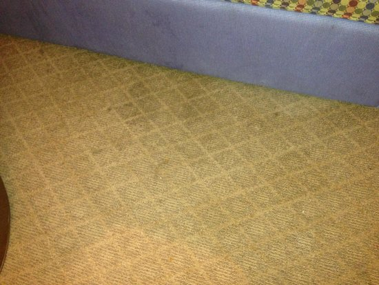 Embassy Suites by Hilton Detroit Southfield : carpet