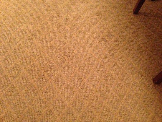 Embassy Suites by Hilton Detroit Southfield: carpet2