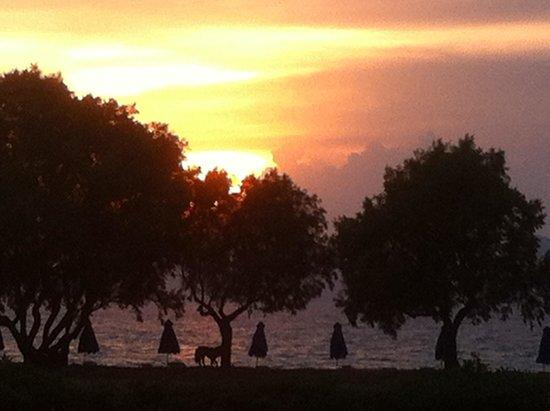Costa Angela: Blick auf Sonnenuntergang aus taverne