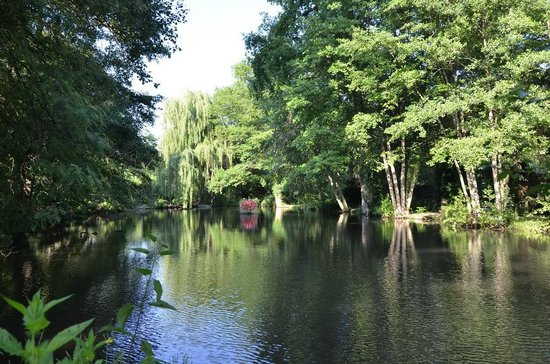 Valaire, Frankrijk: L'étang