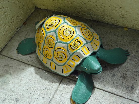Turtle's Deli : This must be the mascot