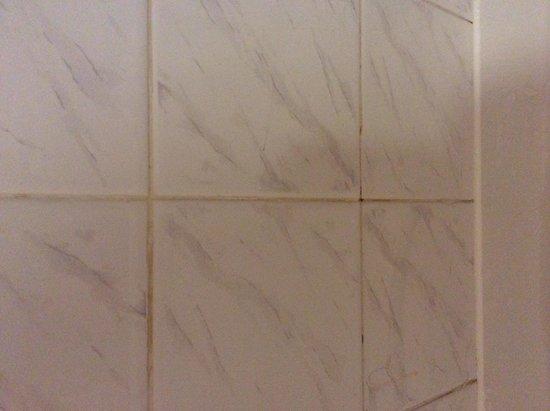 Premier Inn Exeter (Countess Wear) Hotel: Dirty wall tiles