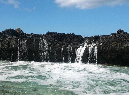 Carambola Tide Pools : Not every day is as active as the next. Most people do not see this kind of action :)