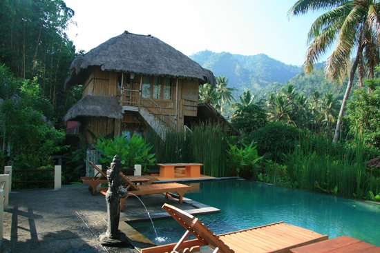Hotel Di Singaraja Bali Info Tempat Wisata Di Indonesia