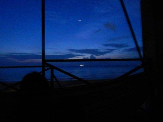 1511 Coconut Grove: 5.30am beach view