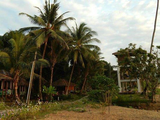 1511 Coconut Grove: Rooms