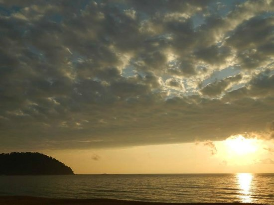 1511 Coconut Grove: Sun Rise