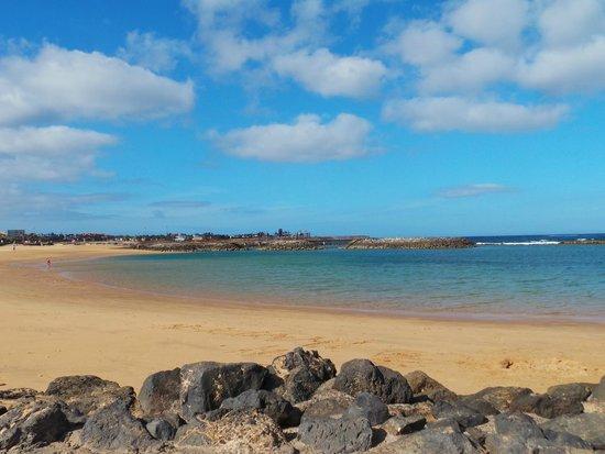 Hotel Elba Carlota : spiaggia dell'hotel
