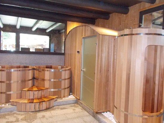 Les Fermes de Marie: sauna