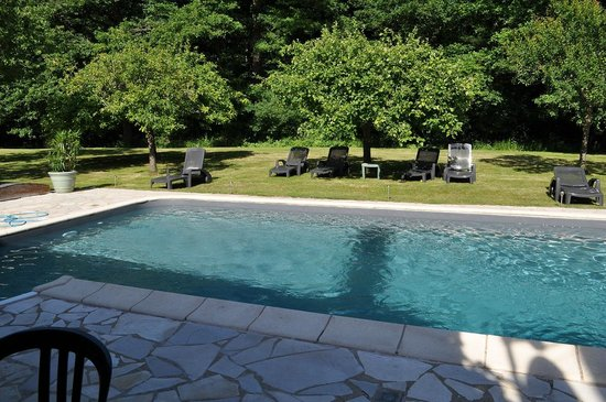 Auberge Forestiere De Marcheroux : Pool area