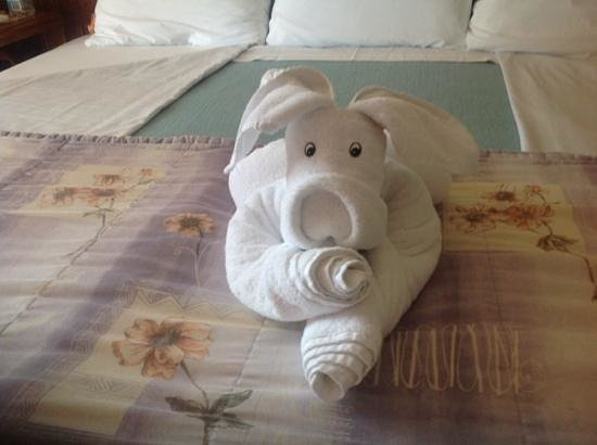 Suites Bahia: we enjoyed the towel art!