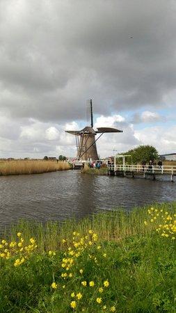 Red de molinos de Kinderdijk-Elshout: 世界遺産 キンデルダイク