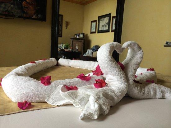 Villa Caletas: Different animal bath towel Decor every mornign