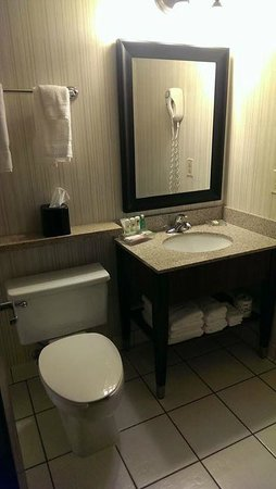 Country Inn & Suites By Carlson, Traverse City: Basic bathroom, good lighting, decent shower