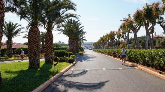 Anissa Beach Hotel : Въезд в гостиницу