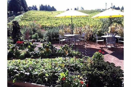 Lynmar Estate Winery: Lynmar Gardens