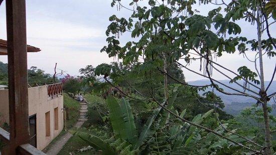 Rio Magnolia Nature Lodge: Hotel Grounds