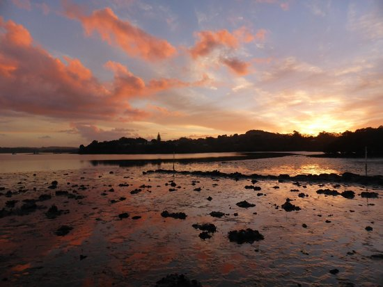 Aroha Island Ecocentre: Sunset with lowtide