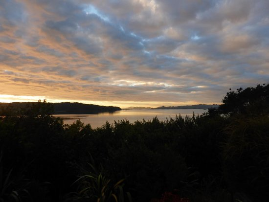 Aroha Island Ecocentre: Your view in the morning from the Kiwi Lodge
