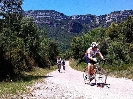 Road cycling from Hotel Mas Pelegri