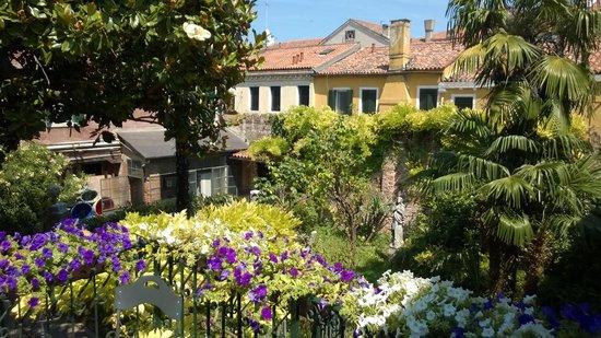 Domus Orsoni : The Garden