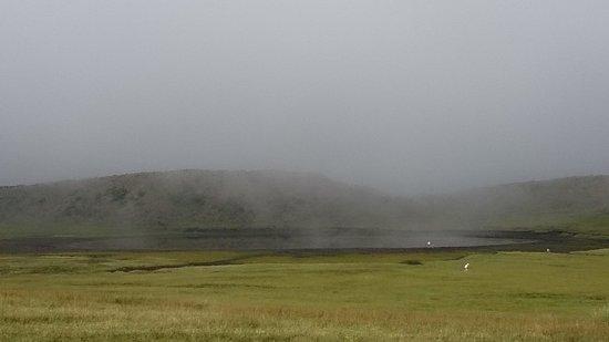 Kusasenri: Foggy