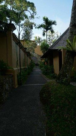 Komaneka at Tanggayuda : going from our villa to the restaurant