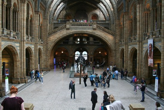 Natural History Museum: Spectacular architecture