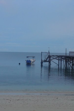 Raja Ampat Biodiversity Resort: Jetty