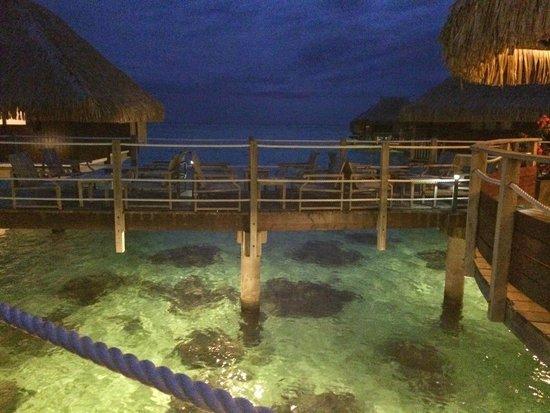 Toatea Crepes Restaurant & Bar: View