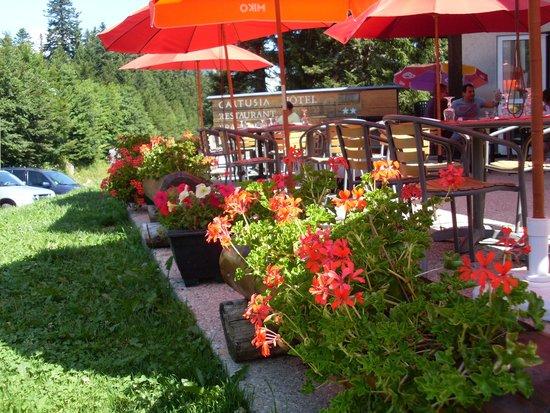 Hotel Cartusia : terrasse