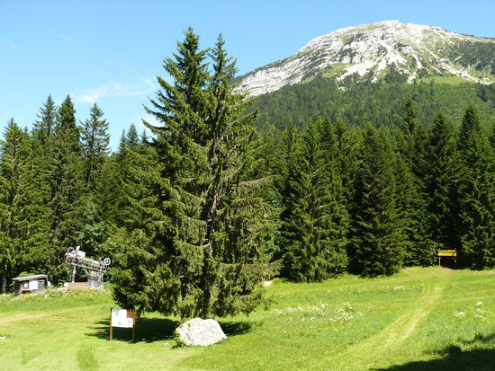 Hotel Cartusia: paysage