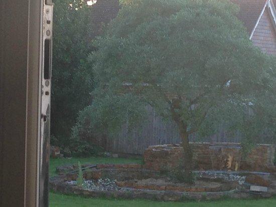 Red Kite House Hotel: beautiful fountain in garden