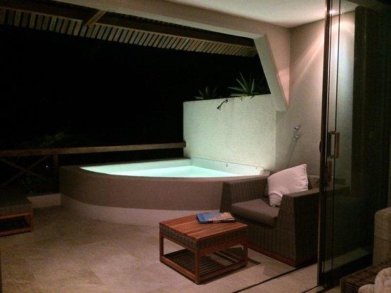 Hotel Jashita : Plunge pool- too cold to swim but nice to see!