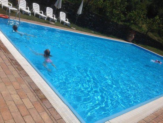 Agriturismo I Moresani: Der Pool