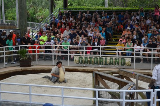 Gatorland: One of the shows, he was hilarious!