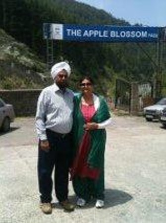 The Apple Blossom: Facade