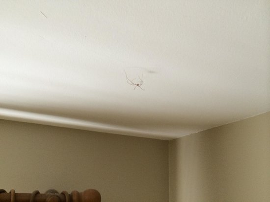 Sli Na Mara: Waking up to that above my head was pleasant.