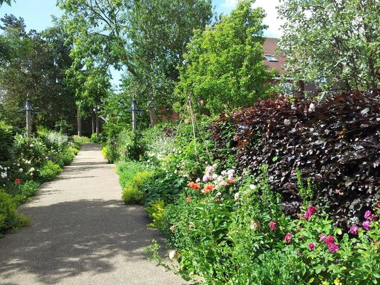 Bushey Rose Garden: Pathway entrance lined with many lovely plants...