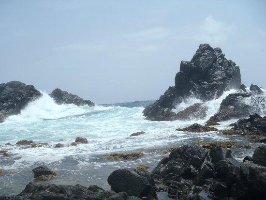 Kini Kini Transfer & Tours: Natural Pool with Aqua waters!