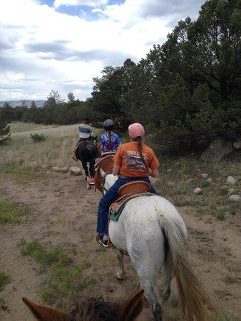 Mt Princeton Riding Stables & Equestrian Center : mosing along