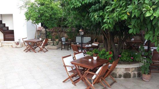 ديجا فو - سبيشال كلاس: Hotel garden