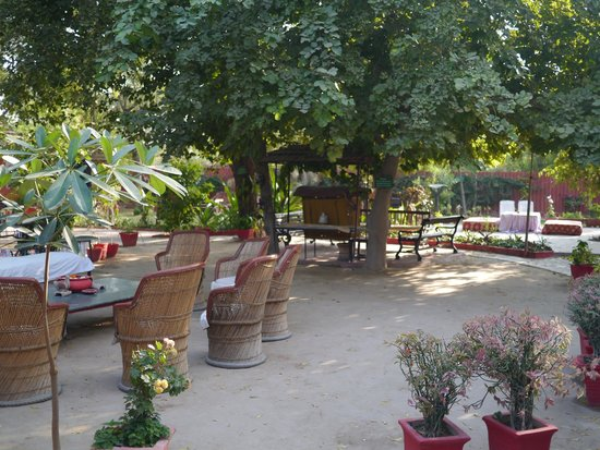 Mandore Guest House : Beautiful Outdoor Dining Options
