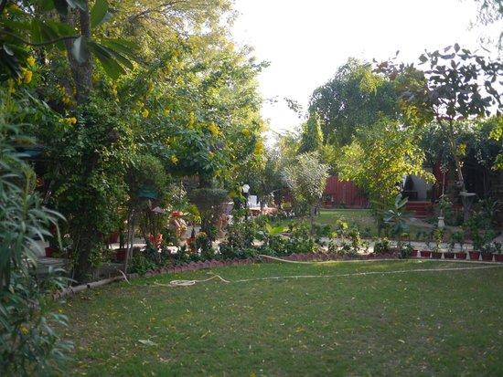 Mandore Guest House: Gardens