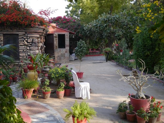 Mandore Guest House : Lovely Property
