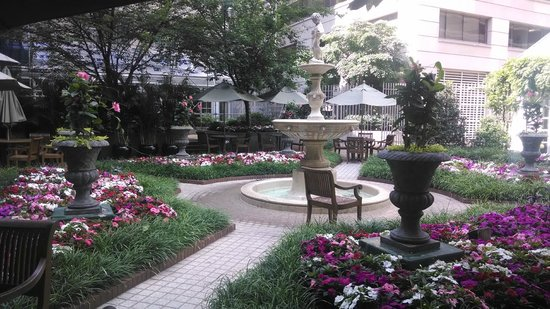 Fairmont Washington, D.C. Georgetown: The lovely hotel garden