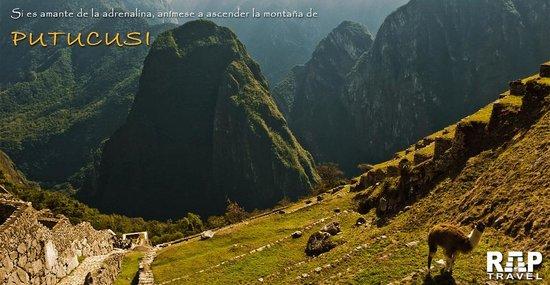 Rap Travel Peru: Putucusi - Machu picchu